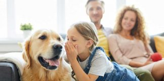 Great News About Talking to Your Pets…
