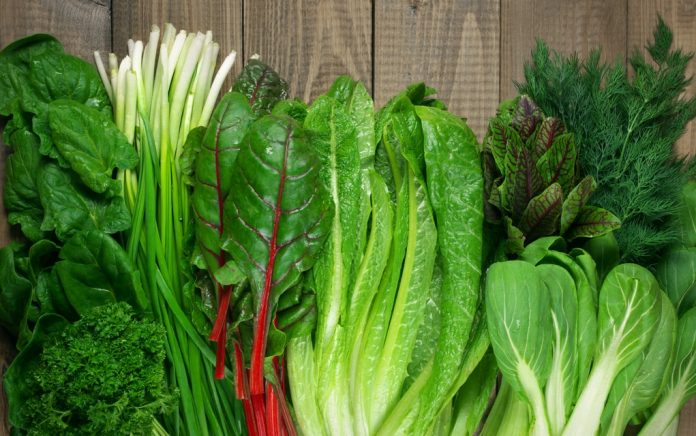 The Best Leafy Greens for Better Health