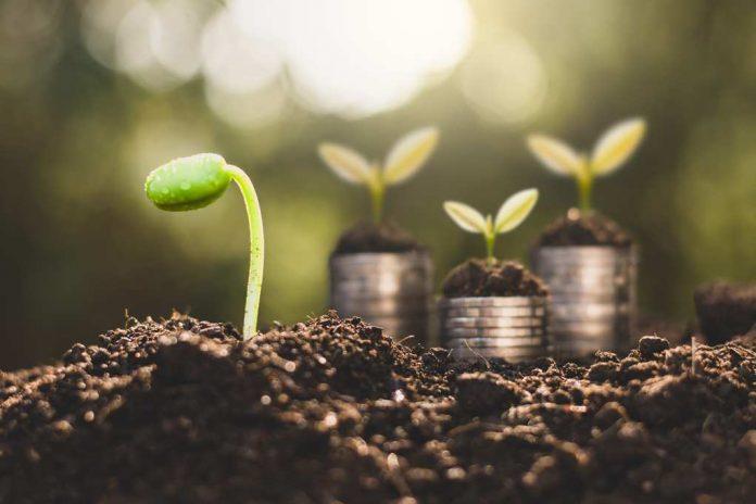 Financial Growth Daily Prosper